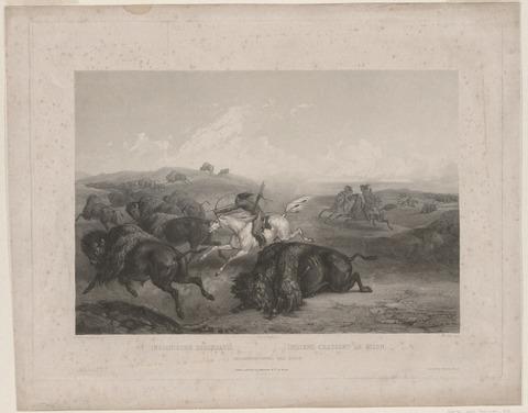 indians buffalo .jpg